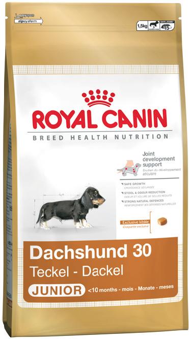 Корм для собак Royal Canin Dachshund junior 1