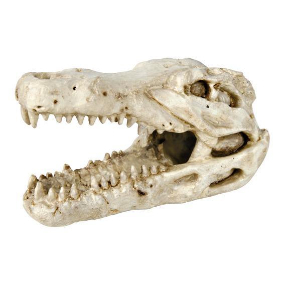 Декорация для аквариума и террариума-череп крокодила 14см