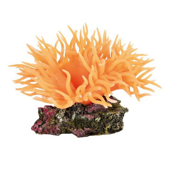 Декорация в акваруим - растение Anemone оранжевое 8см