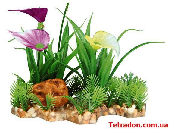 Растение в аквариум 13см