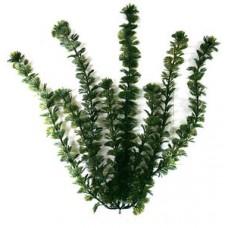 Растение искусственное