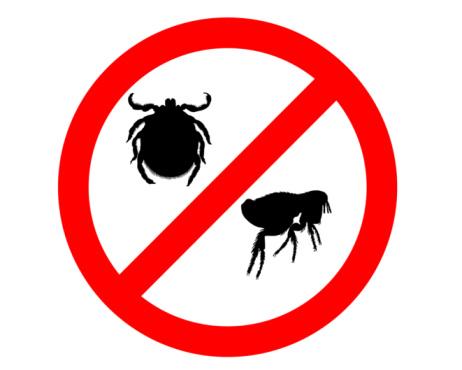 Средства против паразитов
