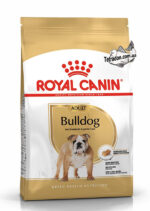 RC-bulldog-adult-logo