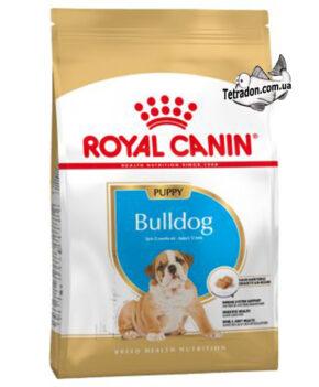 RC-bulldog-puppy-logo