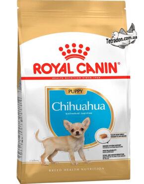 RC-chihuahua-puppy-logo
