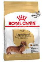 RC-dachshund-adult-logo