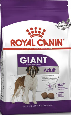 RC-giant-adult-logo