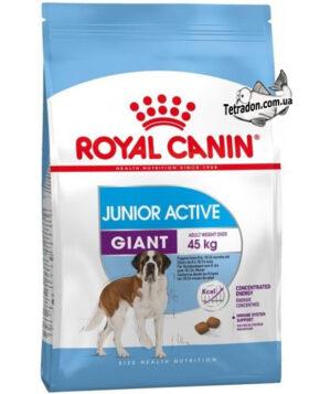 RC-giant-junior-active-logo