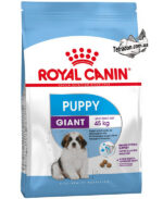 RC-giant-puppy-logo