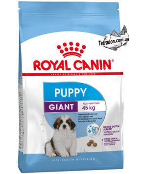 RC-giant-puppy-logo