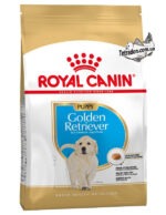RC-golden-retriever-puppy-logo