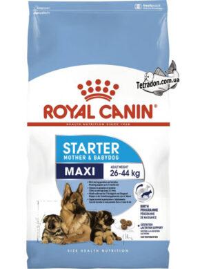RC-maxi-starter-logo