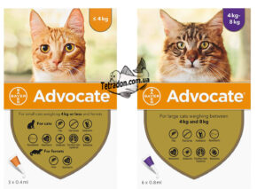 advocate-cat-logo