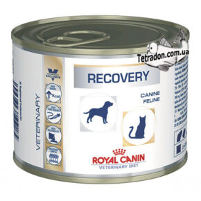 rc-recovery-logo
