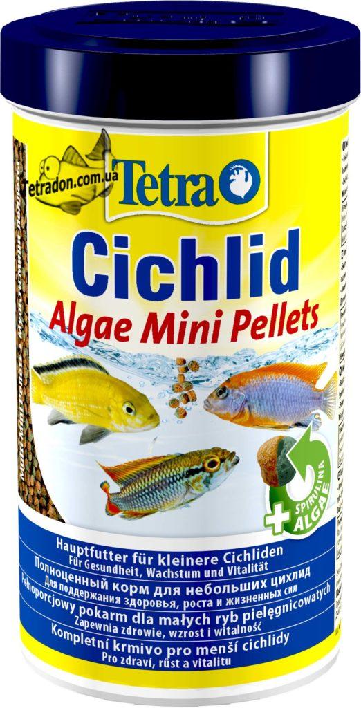 tetra_cichlid_algae_mini