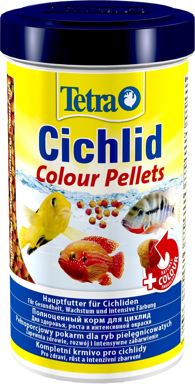 tetra_cychlid_color