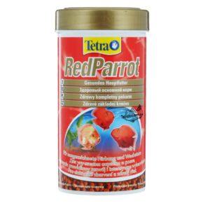 tetra_red_parrot