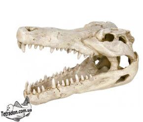 trixie-8713-cherep-krokodila-14-logo