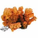 trixie-8838-korall-12-logo