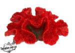 trixie-8839-korall-16-logo