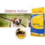 josera-active-2517-dlya-vzroslykh-aktivnykh-sobak-20-kg