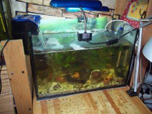 место для аквариума