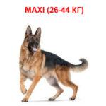 Корм для собак крупных размеров от 26 до 44 кг