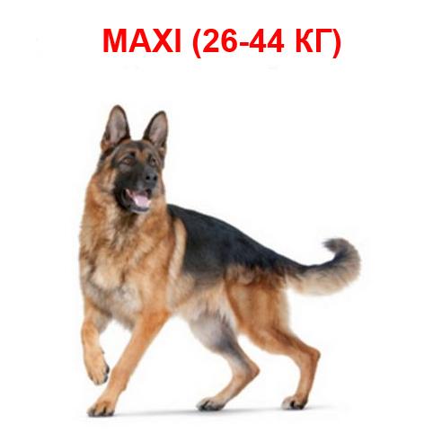 Корм для собак крупных пород от 26 до 44 кг