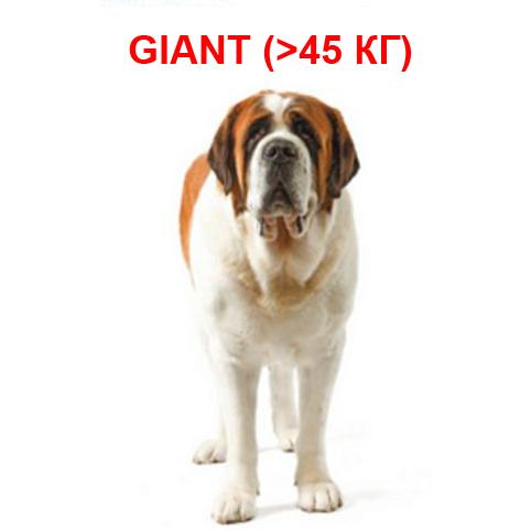 Корм для собак очень крупных пород свыше 45 кг