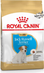 RC-jack-russel-puppy-logo