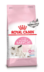 rc-mother-babycat-logo