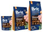brit premium dog senjor s+m