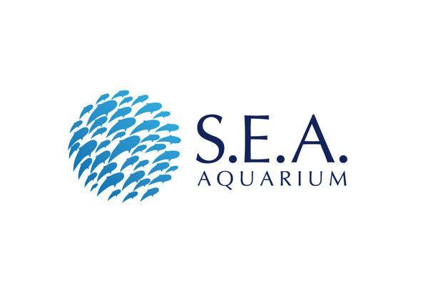Аквариумы морские