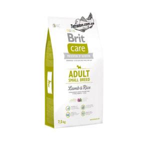 brit-care-adult