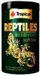 Tropical REPTILES HERBIVORE soft line