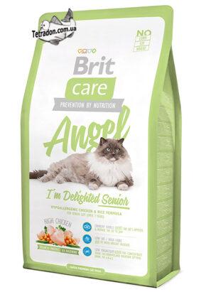 Brit-Care-Cat-Angel-2-logo