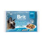 Brit Premium Dinner Plate Gravy Кусочки в соусе