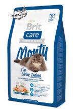 brit-care-cat-monty-2-logo