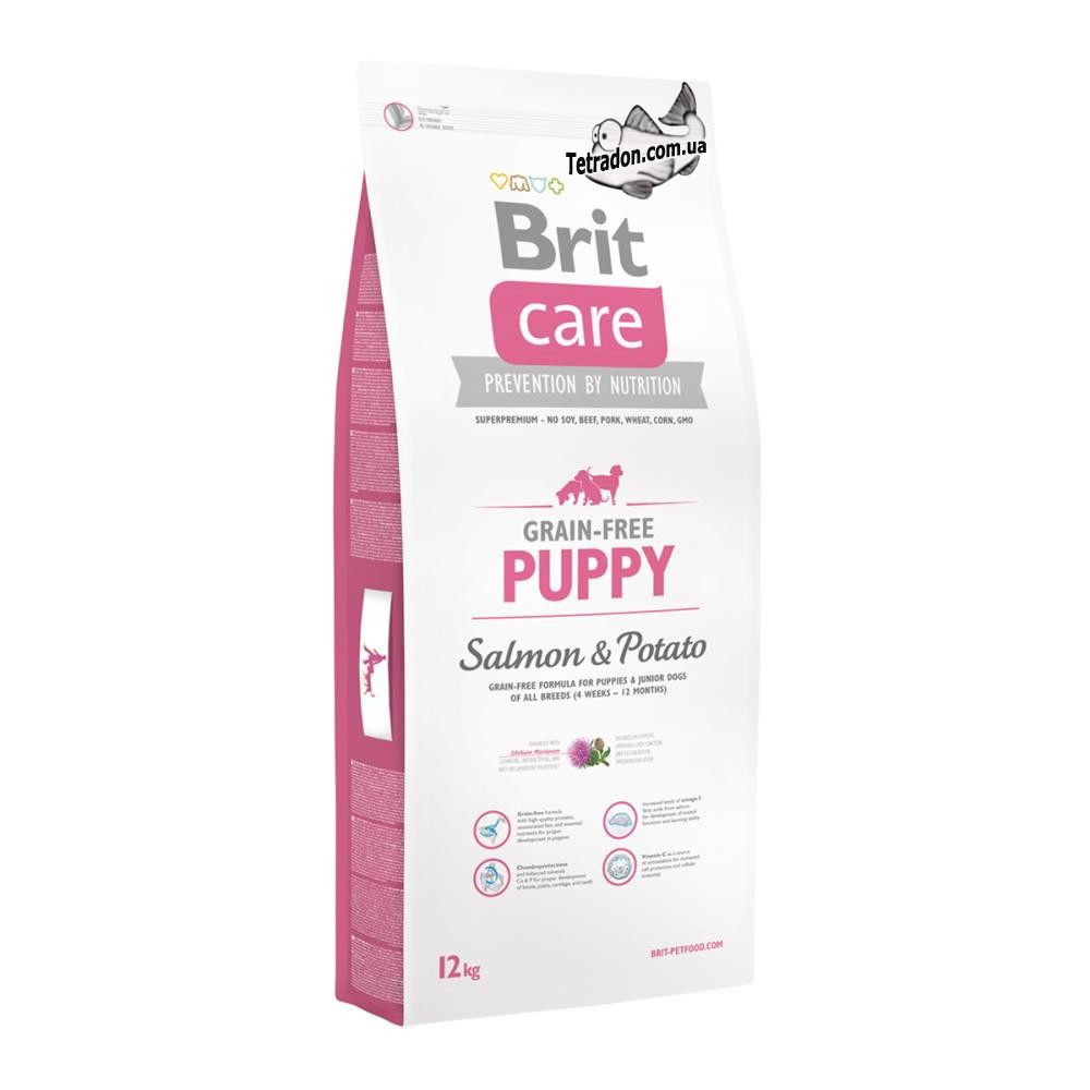 brit-care-dog-puppy-12