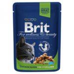 Brit Premium Курица