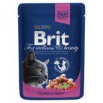 Brit Premium Лосось и форель