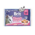 brit-premium-85-dinner-plate-zhele-logo