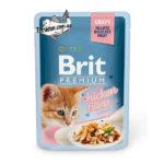 brit-premium-85-kurica-kitten-logo