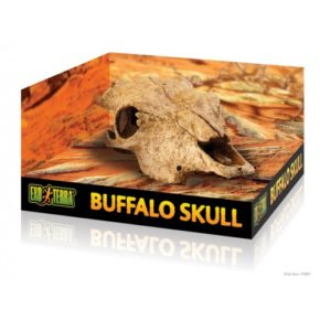 EXO-TERRA Hagen Buffalo Skull