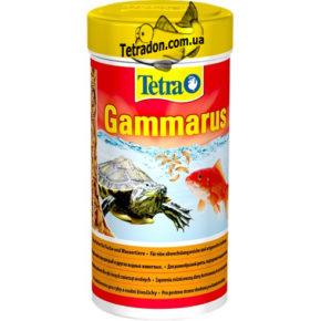 tetra-gammarus-logo