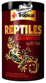 tropical-reptiles-carnivore-logo