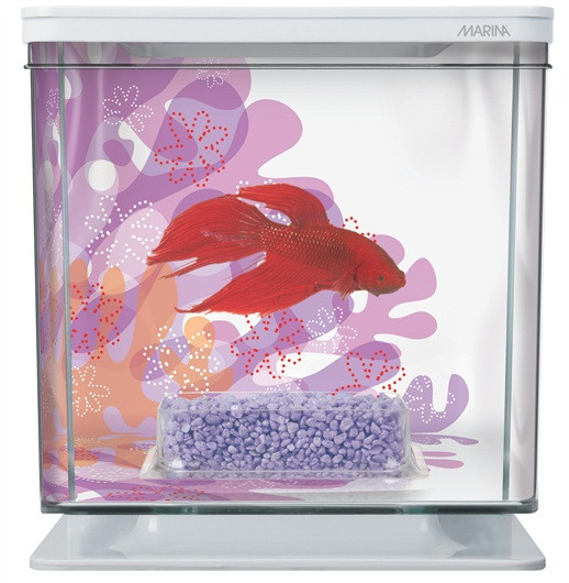 Betta Kit Flower