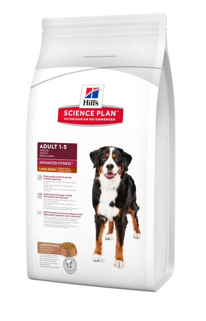 Hills Canine Adult Large Breed Lamb & Rice