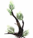 Растение на корне пластик В3002 28х10х18 см