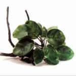 Растение на корне Aquael В2001 23х16х14 см